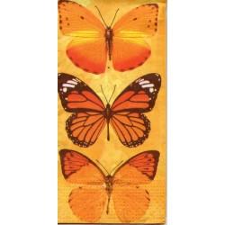 Oranžové motýle