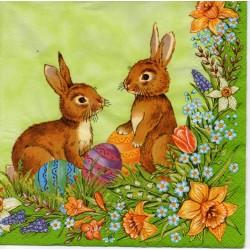 Zajace v tráve
