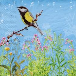 Spievajúci vtáčik
