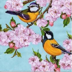 Vtáčiky na čerešni