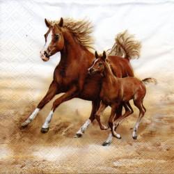 Cválajúce kone