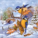 Zima a vianoce