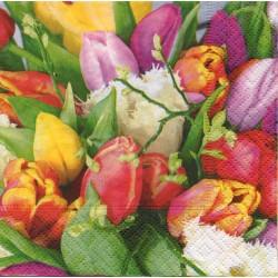 Tulipány mix