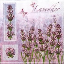 Lavender ružová