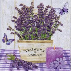 Flovers & Garden