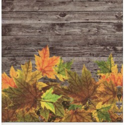 Listy na drevenom