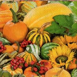 Tekvice a ovocie