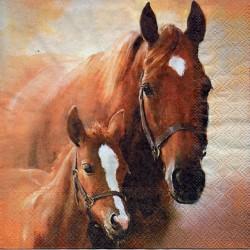 Kôň so žriebätkom