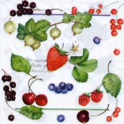 Ovocie na bielom